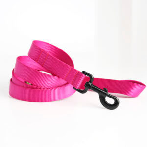 Raspberry pink leash