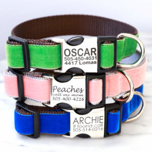 engraved velvet dog collars