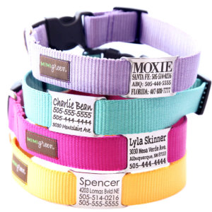 nameplate webbing dog collar