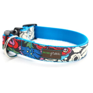 Alice Blue Floral dog collar