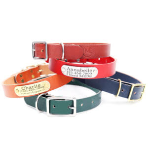 engraved nameplate leather collars colorful