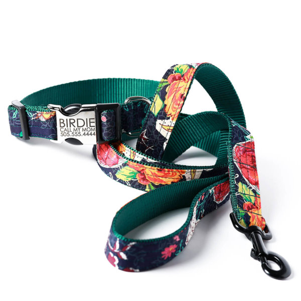 Birdie Collar & Leash Set