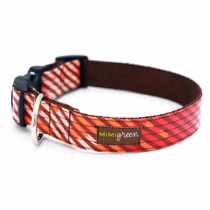 engraved buckle Orange striped dog collar