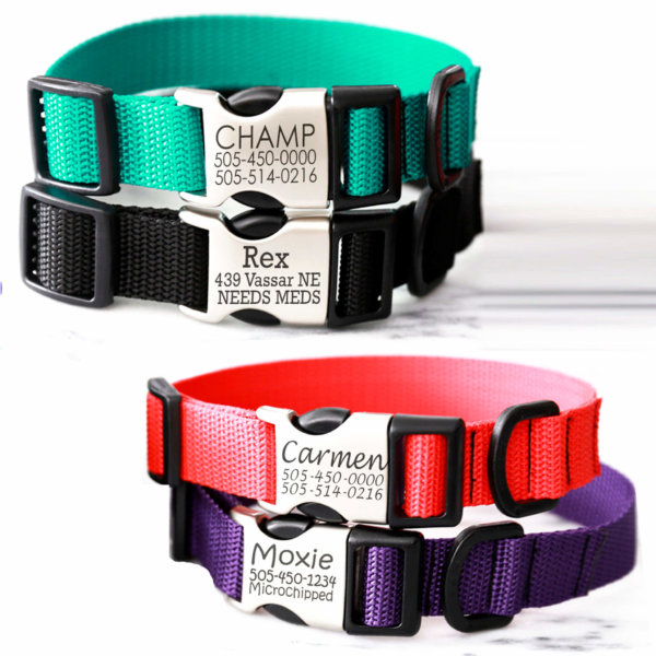 MG2 Personalized Dog Collar
