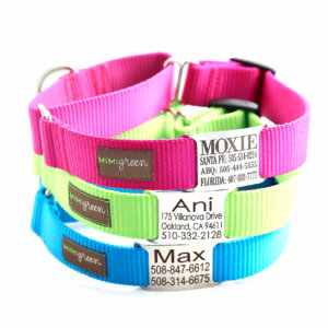 martingale dog collar personalized