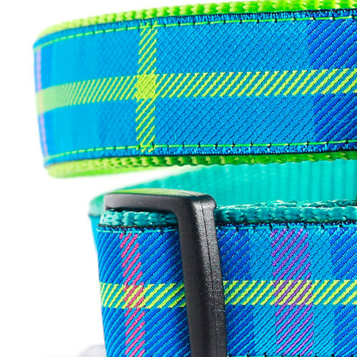 Blue Ribbon / Apple Green Webbing
