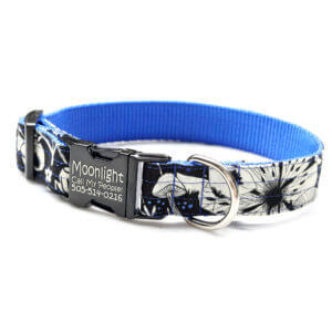 Moonlight Dog Collar Engraved