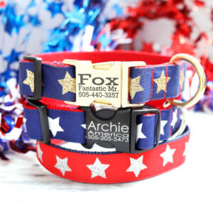 star dog collar engraved