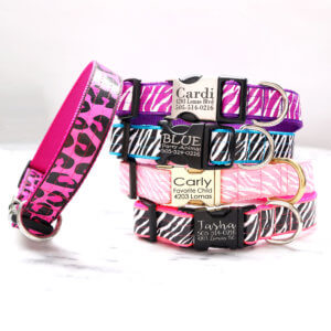 animal print dog collars