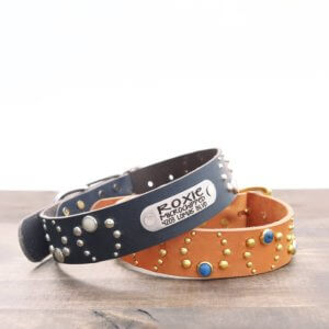 Studded Wide Leather Dog Collar - 1.5