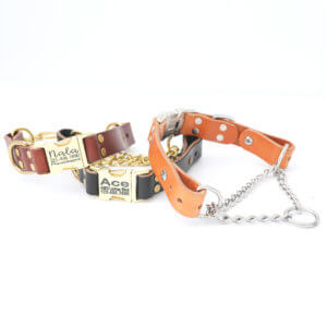 leather martingale dog collar quick side release buckle