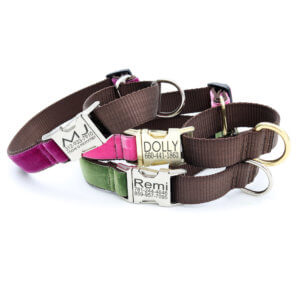 martingale velvet dog collar with buckle