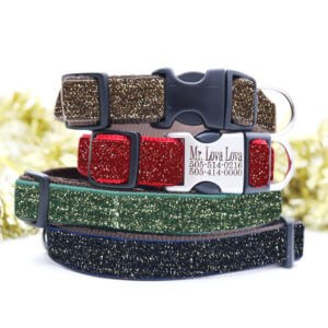 holiday gold dog collar
