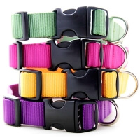 Nylon Webbing Dog Collars