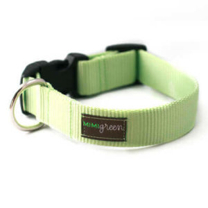 Lime Webbing Collar