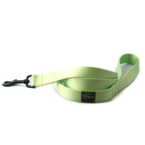 Lime Webbing Leash