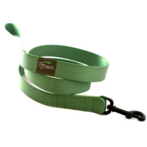 Sage Green Webbing Collar