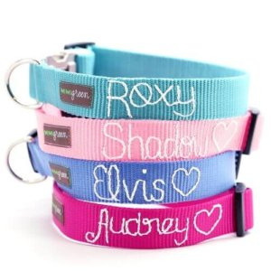 Personalized Webbing Dog Collar *18 colors