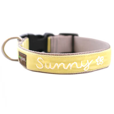 'Sunny' Personalized Dog Collar