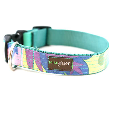 Willow Laminated Cotton Dog Collar