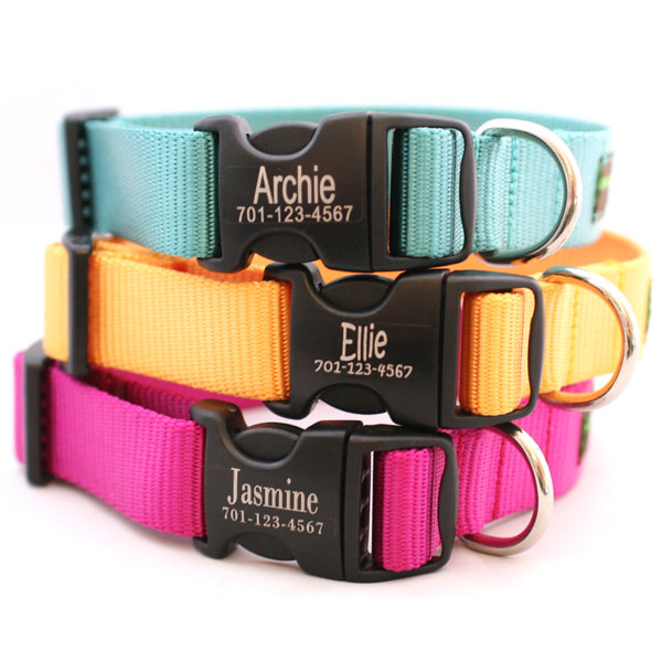 DD Engraved Personalized Webbing Dog Collar *21 colors
