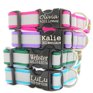 Reflective Dog Collar with Etched Personalized Buckle