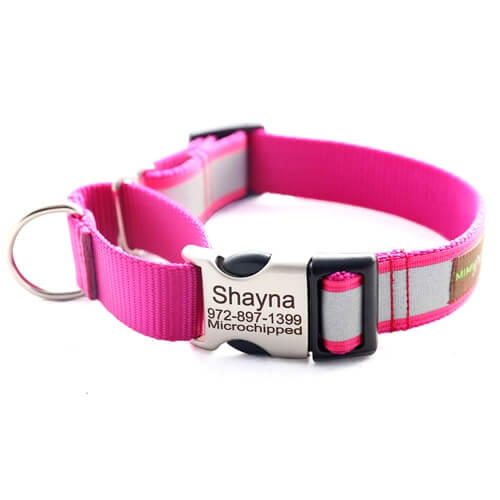 Personalized Reflective Martingale Dog Collar