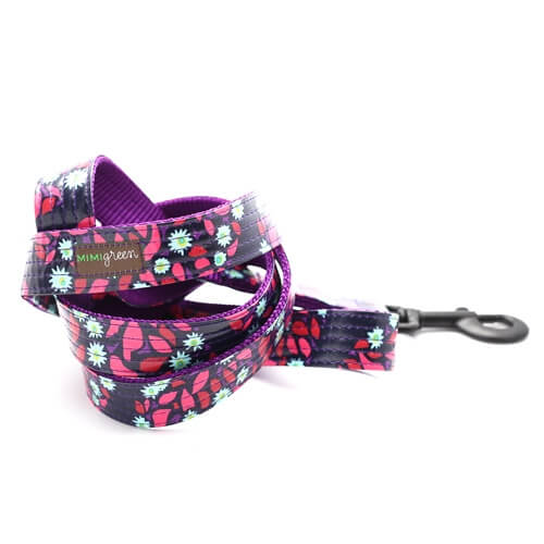 Jasmine Laminated Cotton Dog Collar